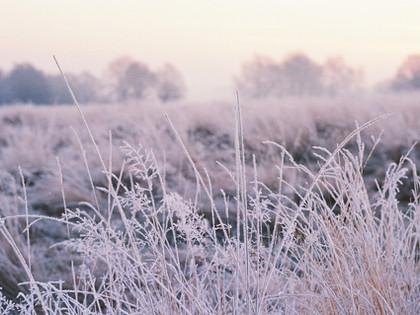 Winter's call...
