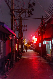 2015-03-19- Pekin (IMG_0184).jpg