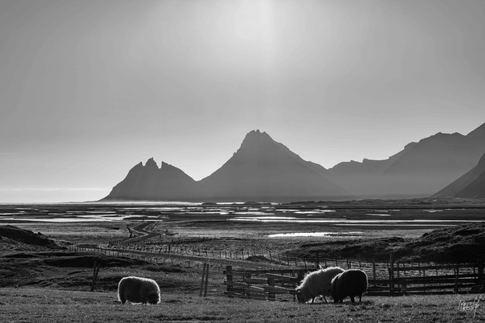 2019-10-28 - Iceland (5Q1A1459).jpg