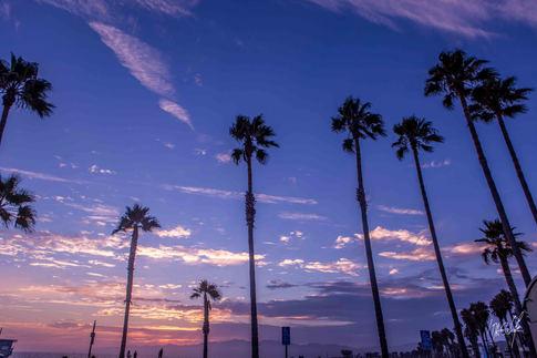 2014-07-30 - Los Angeles (8L5A1905).jpg