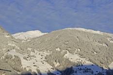 Haus Alpenfriede Aussicht