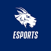 StEdsEsports.png