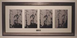 Framed_Screenprint_Quadruple_Set_Artwork