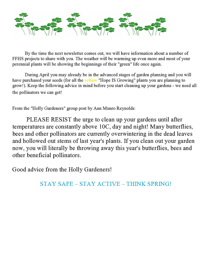 Newsletter March 2021-page0007 (2).jpg