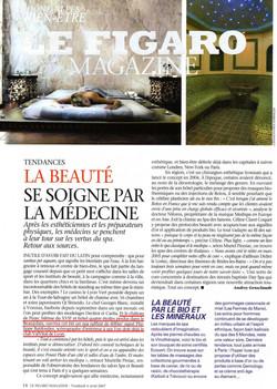 Figaro magazine France