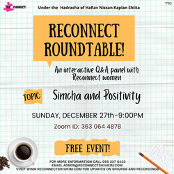 Reconnect roundtable (2)