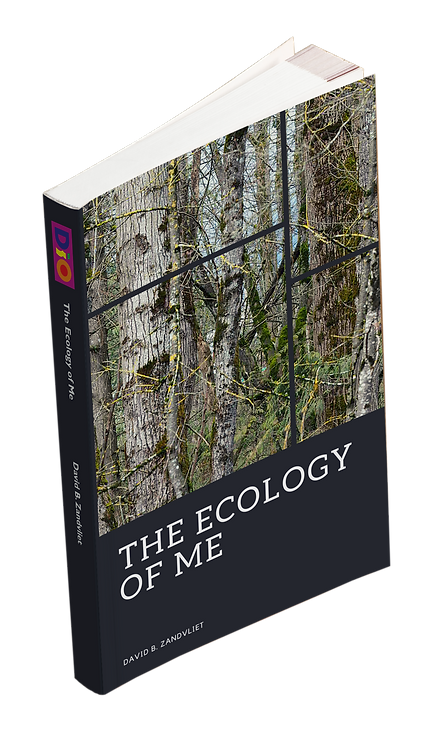 The Ecology of Me