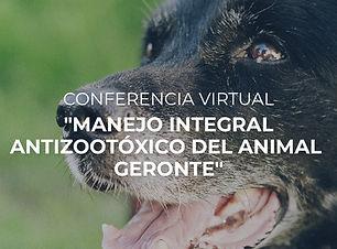 Conferencia virtual - Antizootóxico