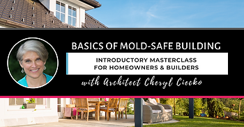 Basics Of MoldSafe Building Masterclass.