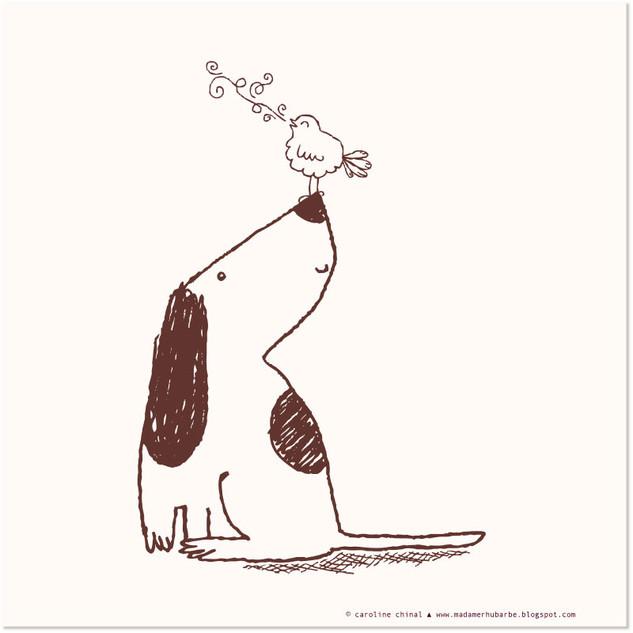 Chien & Oiseau // Dog & bird pals