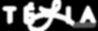 TeliaAgency-logo.png