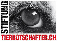 Tierbotschafter.ch.jpg
