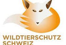 Wildtierschutz Schweiz.jpeg