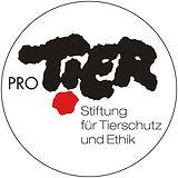 Pro tier.jpg