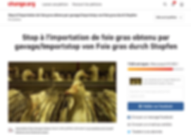 Capture_pétition.png