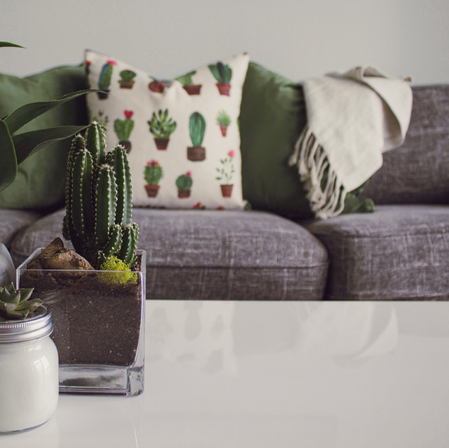 Nourish your plants AquaTatva