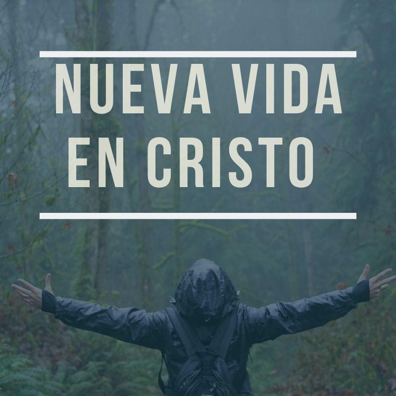 El_texto_del_párrafo
