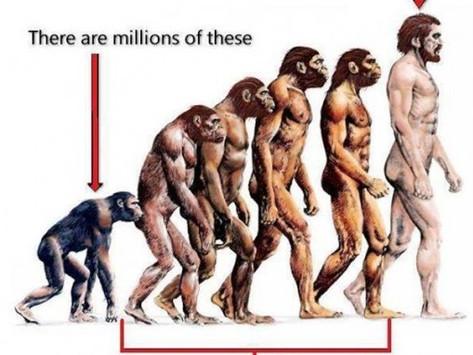 Questions on Darwinian Theory