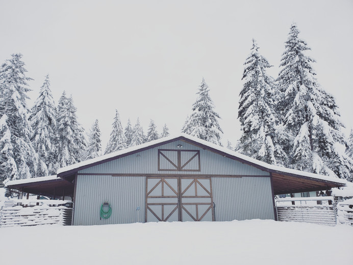 The barn during the Snowpocalypse of 2019