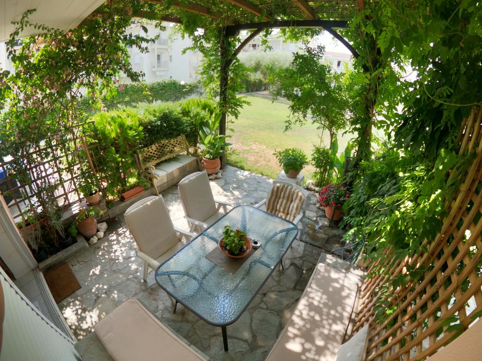 Garden (back)