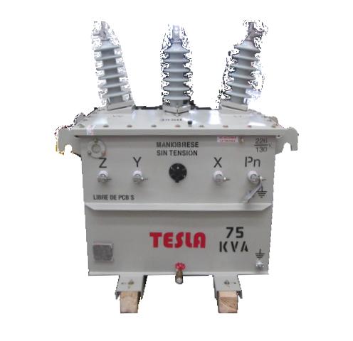 Transformador Trifásico Convencional 75 kVA Serie 34.5/1.2kV