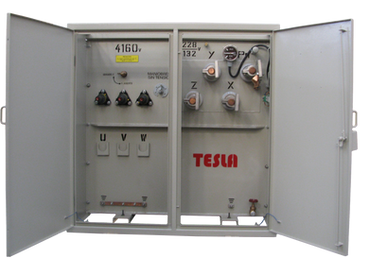 Transformador Trifásico Tipo Pedestal Radial 1250 kVA Serie 15 / 1,2 kV