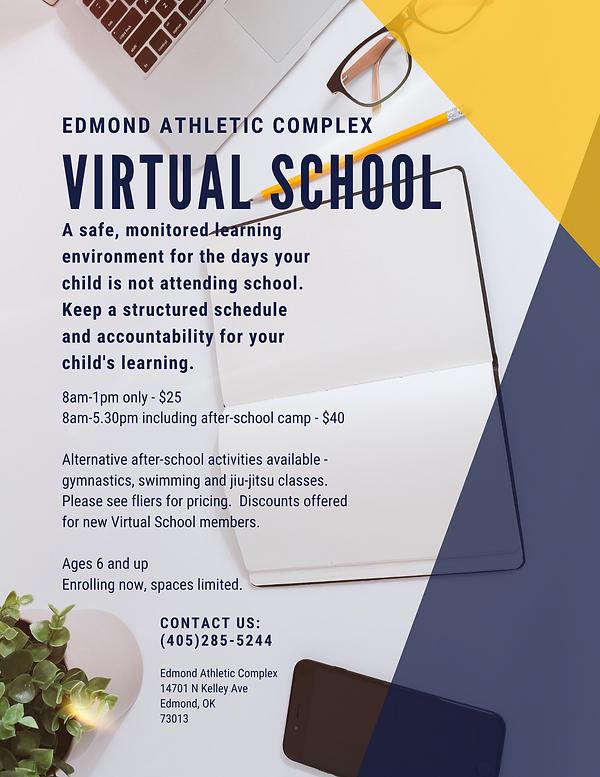 Virtual School.png