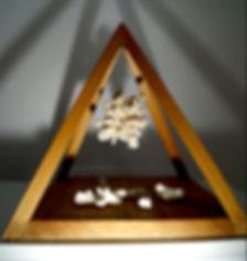 alana-di-giacomo-hcpimage-ecological-dri