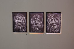 Untitled_The_Prisoner_&_Andy_Quilty_websize-22