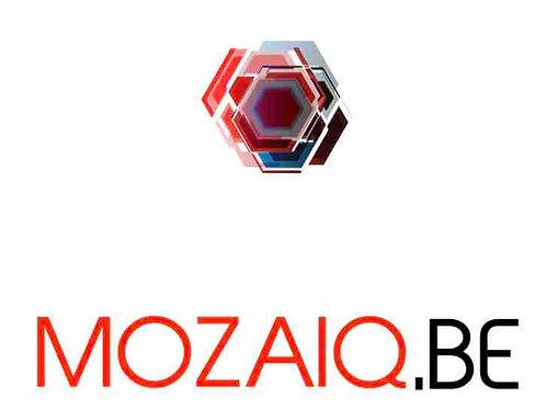 mozaiq.be