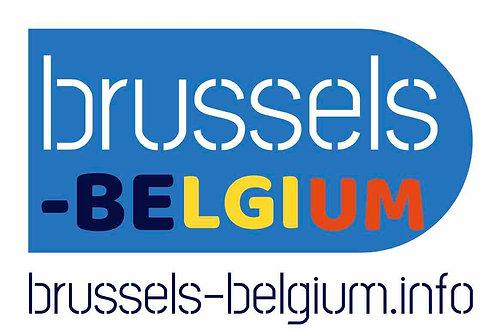 brussels-belgium.info