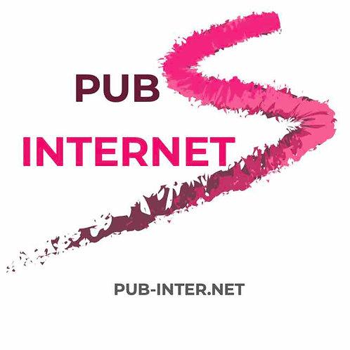 pub-inter.net