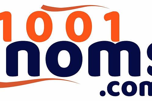 1001noms.com