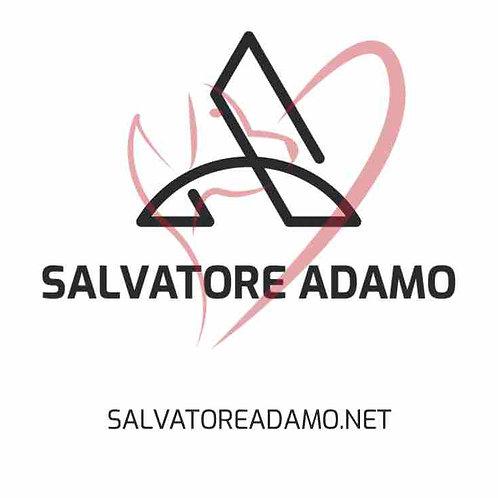 salvatoreadamo.net