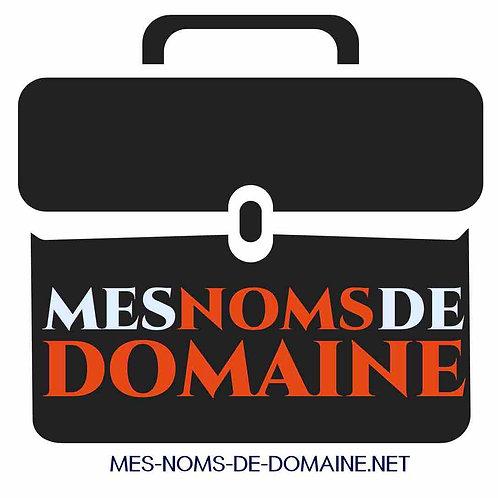 mes-noms-de-domaine.net