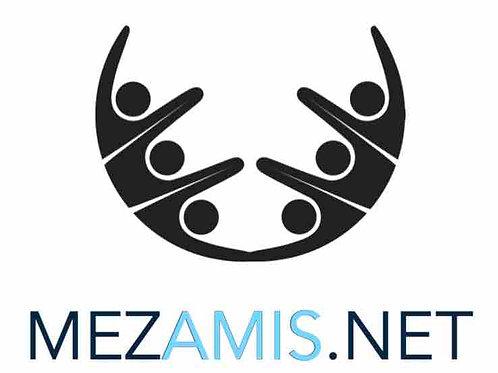 mezamis.net