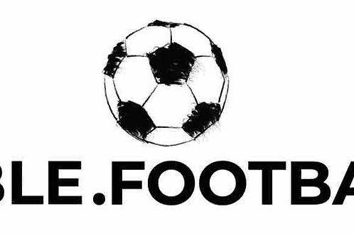 bible.football