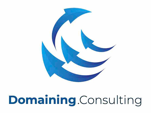 domaining.consulting