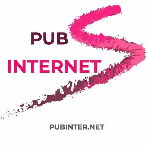 pubinter.net
