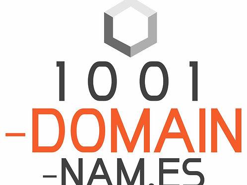 1001-domain-nam.es