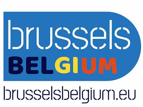 brusselsbelgium.eu