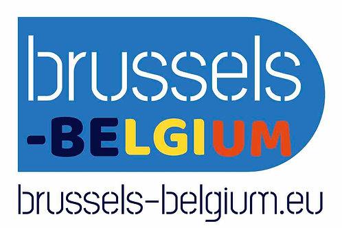 brussels-belgium.eu