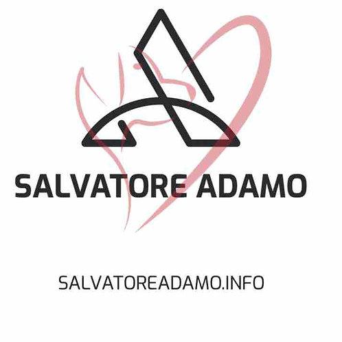 salvatoreadamo.info