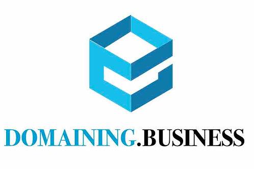 domaining.business