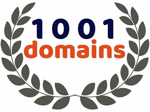 1001.domains