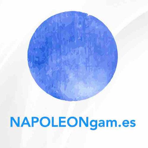 napoleongam.es