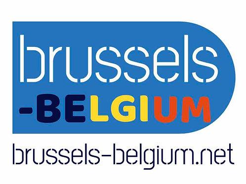 brussels-belgium.net