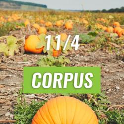 Corpus Christi Pumpkin Patch Run
