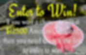 WW-giveaway2-800.jpg