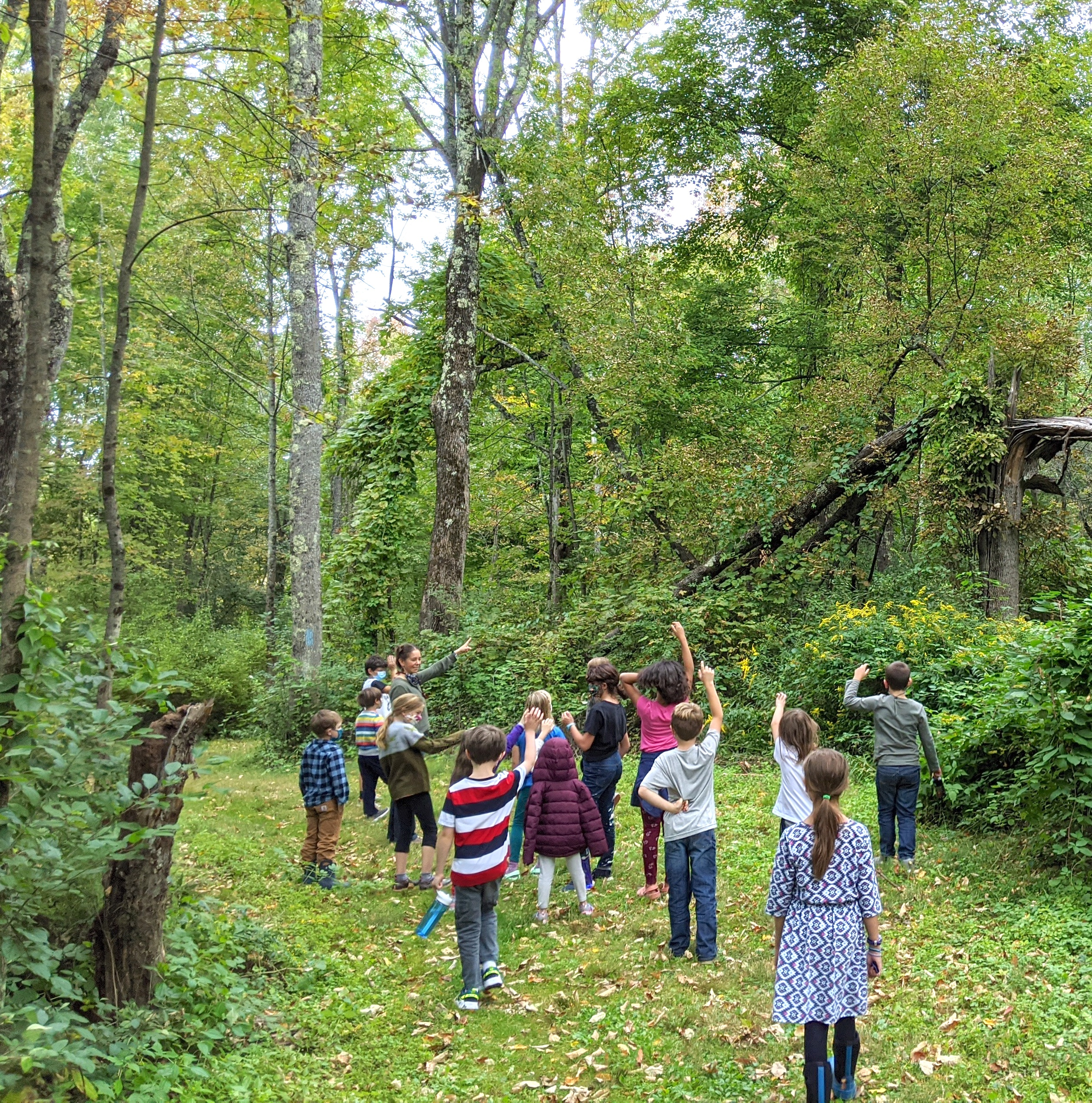 discovery on the Robert Frost Trail